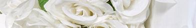 Derm Acte White  - осветляющая линия для пигментированной кожи